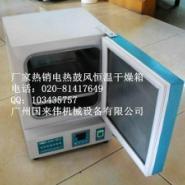 广东省101系列电热鼓风干燥箱品牌图片