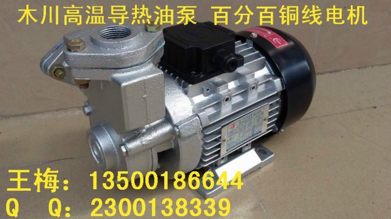 供应TS63模温机油泵 TS63模温机油泵厂家