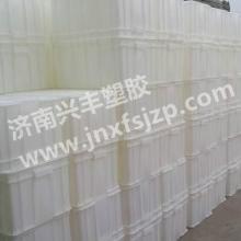 供应白色食品箱白色周转箱安全无毒环保