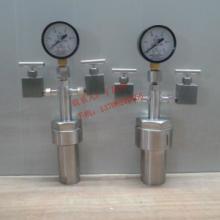 供应二个阀门反应器/反应釜/化工仪器