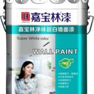 十大健康墙面漆图片