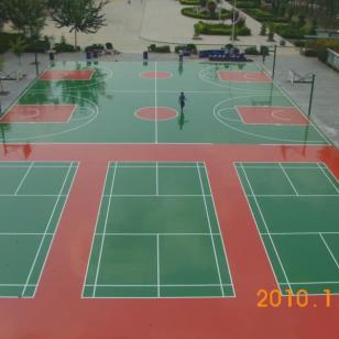 东莞篮羽球场油漆施工图片