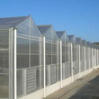 供应阳光板温室@大名绿荫温室专业品质的服务让您再无后顾自由 阳光板温室大棚