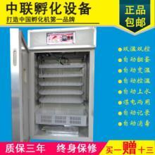 供應440枚家用全自動孵化機電孵箱包郵小雞孵化器鴿子孵卵箱鴨子孵化蛋器圖片