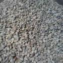 天津2-4毫米鹅卵石滤料厂家直销图片