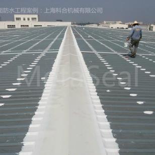 钢板屋面防水图片