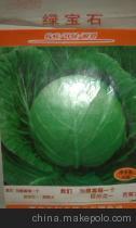 供应蔬菜种子绿宝石甘蓝