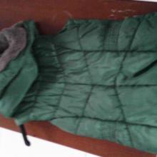 供应绿色外套