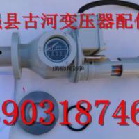 变压器QYJ9-40气体继电器