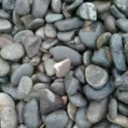 石家庄白色机制鹅卵石批发图片