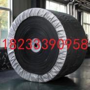 织物芯输送带棉帆布尼龙生产厂家图片