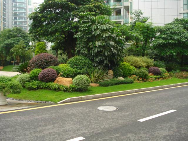 供应承接绿化工程