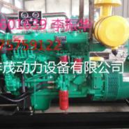 山东潍坊100千瓦发电机环保型图片