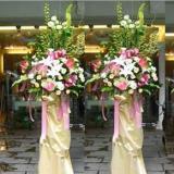 供应广州提供婚礼道具蝴蝶彩蝶放飞鲜花