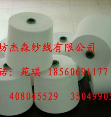 纯涤大化纤32S图片/纯涤大化纤32S样板图 (2)
