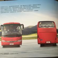 供应金龙客车KLQ6856V8批发