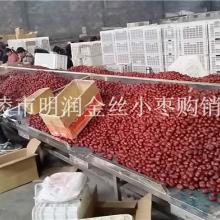 供应新疆红枣厂家和田骏枣批发价格若羌灰枣价格批发