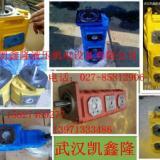 供应齿轮油泵齿轮油泵CBG1050