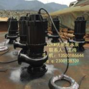 热水潜水泵图片