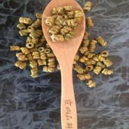霍山铁皮石斛种植技术培训图片