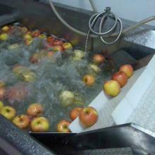 供应果蔬清洗设备自动清洗机