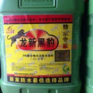 龙新黑豹防水涂料厂家图片