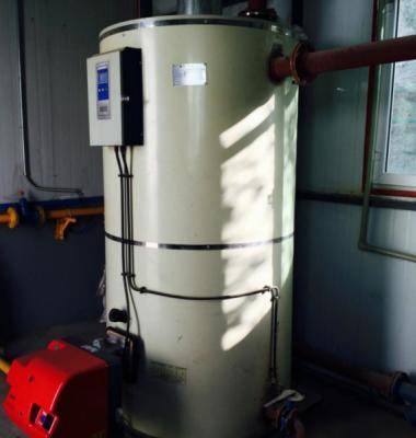 立式燃气锅炉图片/立式燃气锅炉样板图 (1)