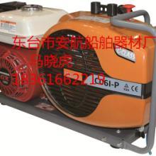 供应ECOWELL呼吸空气压缩机原装加拿大进口充气泵提供CE认证