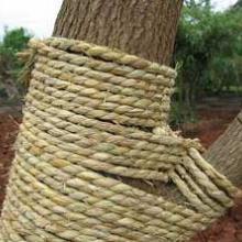 供应各种规格草绳稻草绳,山东草绳,南京草绳,长沙草绳批发