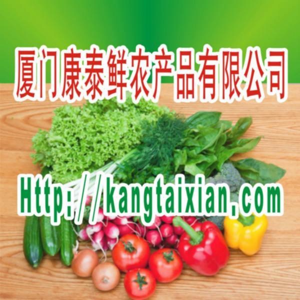 供应厦门工厂蔬菜新鲜蔬菜