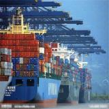 智利散货海运拼箱 国际海运到智利圣地亚哥 深圳-圣地亚哥散货拼箱 海运货代