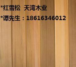 红雪松图片/红雪松样板图 (2)