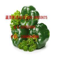 增城蔬菜配送中心/加工