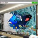 澳门3D立体海洋海豚背景墙图片