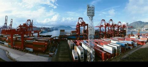 供应木材进口报关/木材进口代理图片