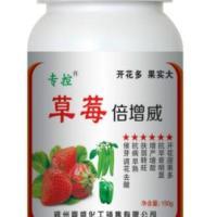 供应草莓膨大增甜增产草莓倍增威好农药草莓专用好农药