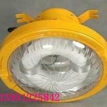 供应SB1120免维护节能防爆路灯 防爆无极泛光灯 电磁感应灯批发