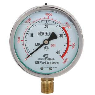 YN100耐震压力表图片