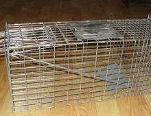 供应捕猫笼系列-2010-C