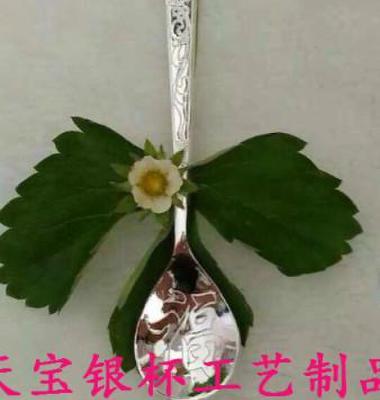 高档DIY银饰图片/高档DIY银饰样板图 (3)