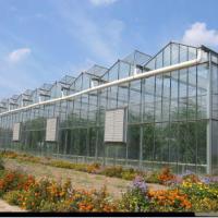 农业用具/寿光鸿盛温室大棚建造