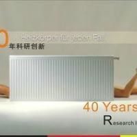 欧洲雅克菲钢制板式散热器