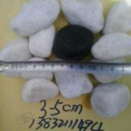 石家庄5-8cm滤料鹅卵石供应批发图片