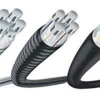供应青岛铝合金电缆厂家,青岛铝合金电缆厂家报价,青岛铝合金电缆厂家价格